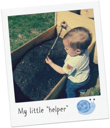 garden_helper2