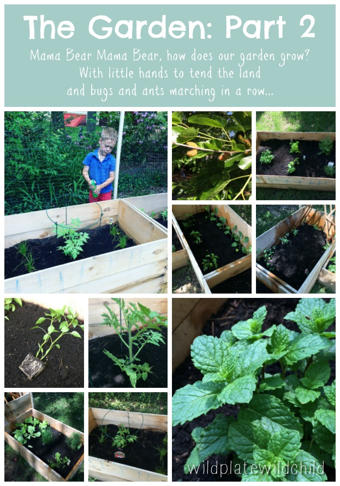 Garden_part2